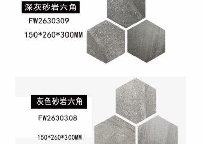 0005 六角形磚
