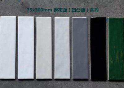 6103 瓷片 細尺寸牆身磚