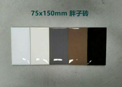 6104 瓷片 細尺寸牆身磚